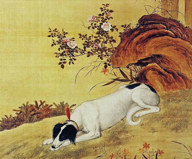 Prized Dog Chinese Greyhound oleh Giuseppe Castiglione